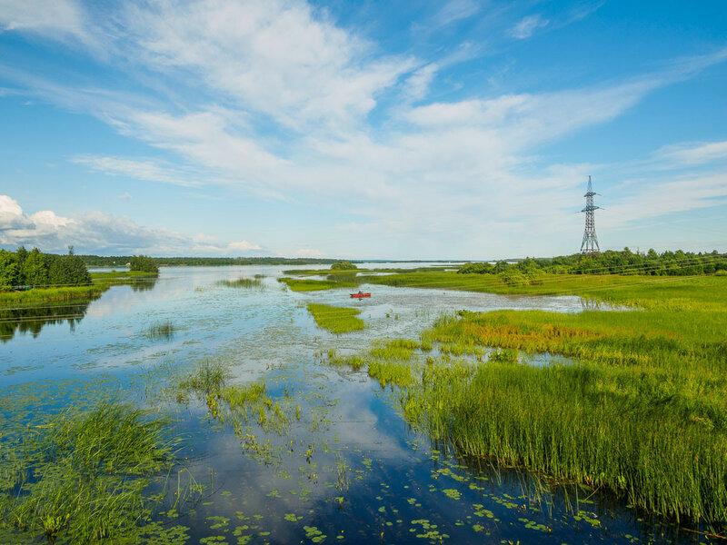 Здесь река Суна впадает в Онежское озеро.