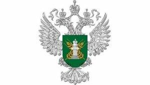Продукты в ручной клади не прошли на российской таможне