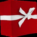 Christmas Gift (25).png
