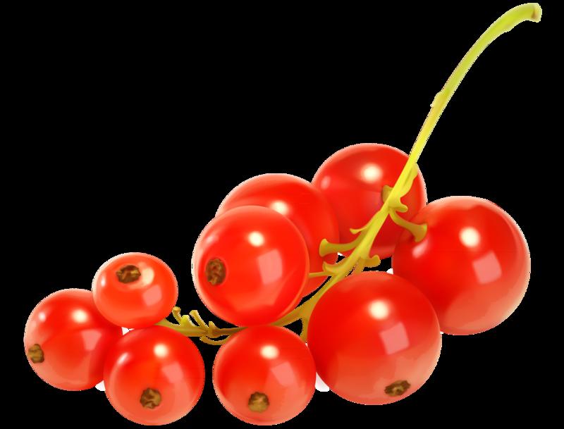 ягоды (1).png