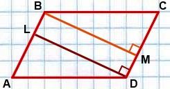 bolshaya vyisota parallelogramma