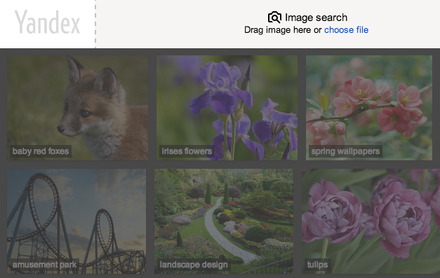 yandex.image search 2.png