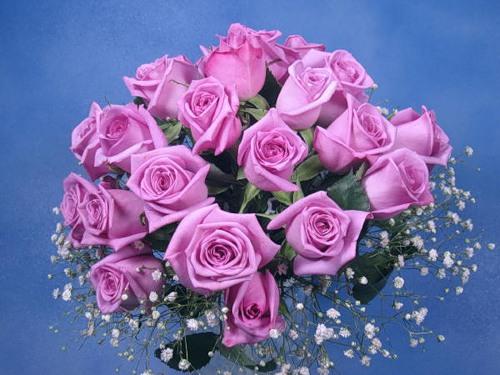 Букет розовых роз на голубом фоне