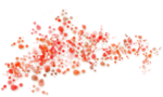 Butterfly Bouquet (36).png