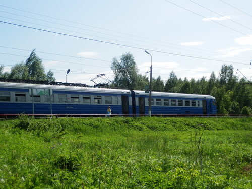 P5310001.JPG