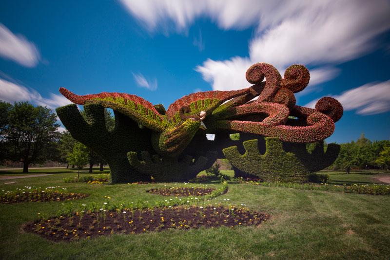 Лучшие работы с выставки terre d espérance 18