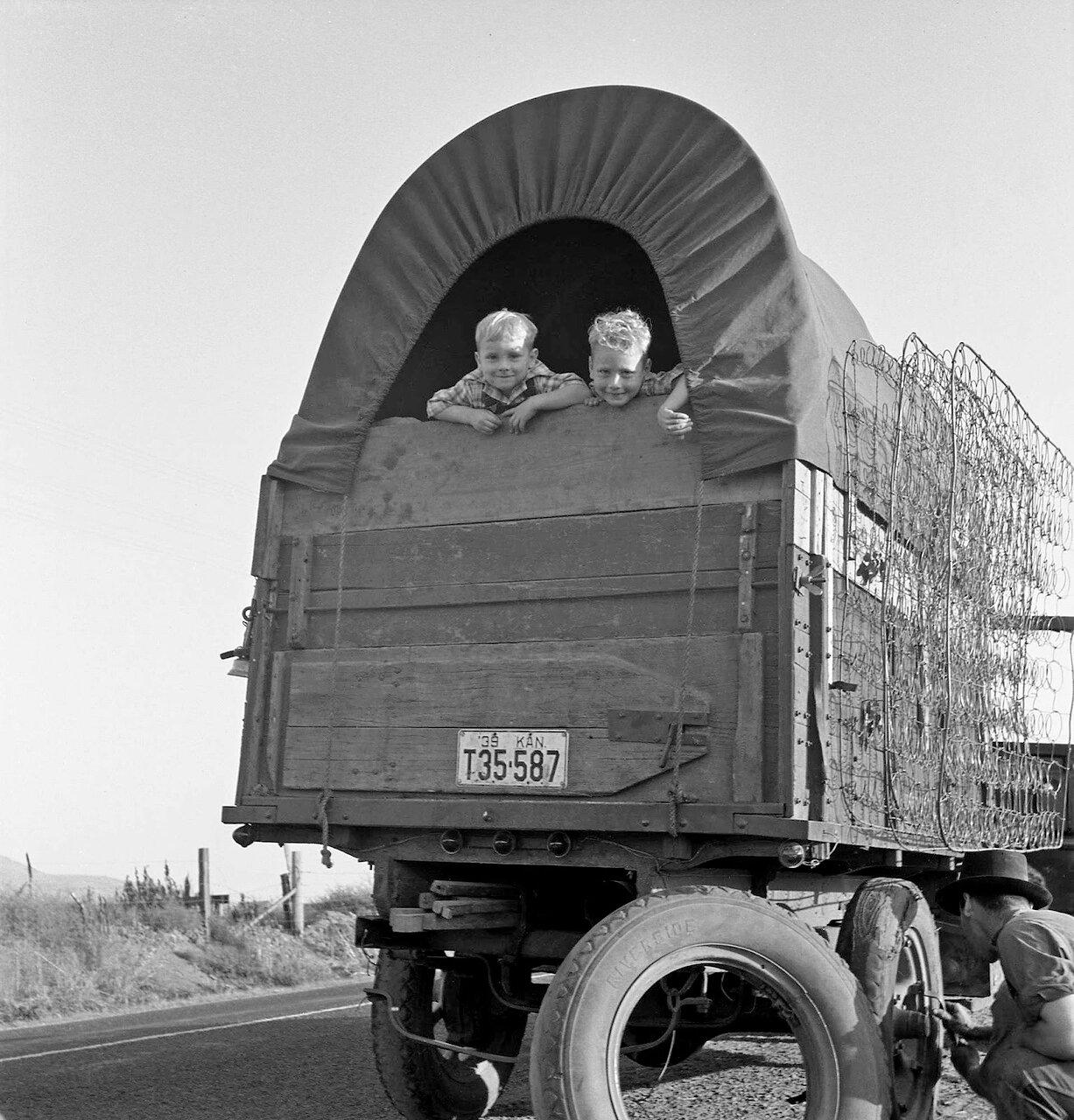 Прямо из Канзаса. По дороге на картофельную плантацию. Возле Мерилла, Орегон, 1939
