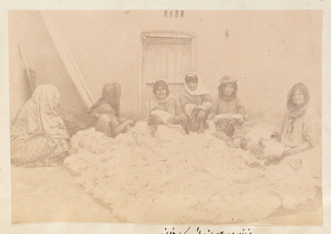 Сборщицы шерсти из Саваджибулагха