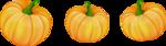 Осень25