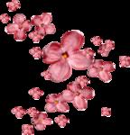 Lilas_La-vie-en-rose_elmt (59-1).png