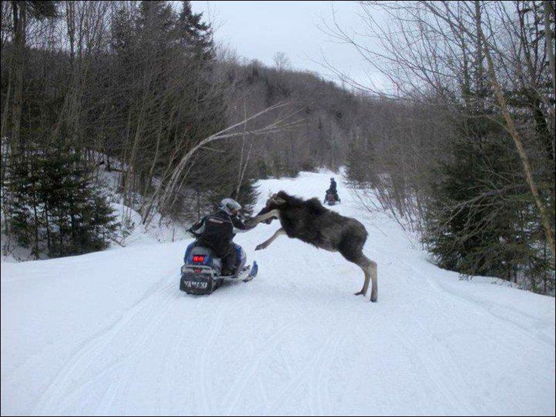 Управление снегоходом при не предвиденных препятствиях
