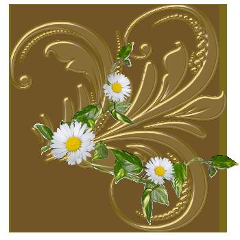 http://img-fotki.yandex.ru/get/9104/97761520.1c/0_7d5df_ba3082e3_orig.png