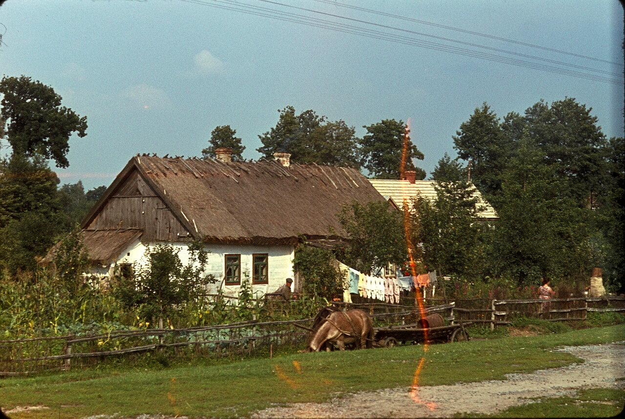 Возвращение в Европу по дороге Киев-Львов. Деревня Березовка