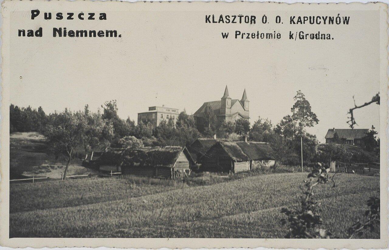 Лес на Немане возле монастыря