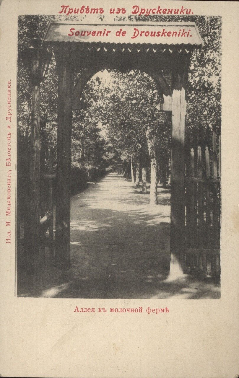 Аллея к молочной ферме. 1905