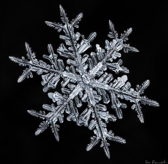 But it's cold outside, Don Komarechka280.jpg