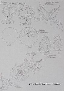 Мастер-класс. Английская роза «Оливия» от Vortex  0_fc0e2_5541dde1_M