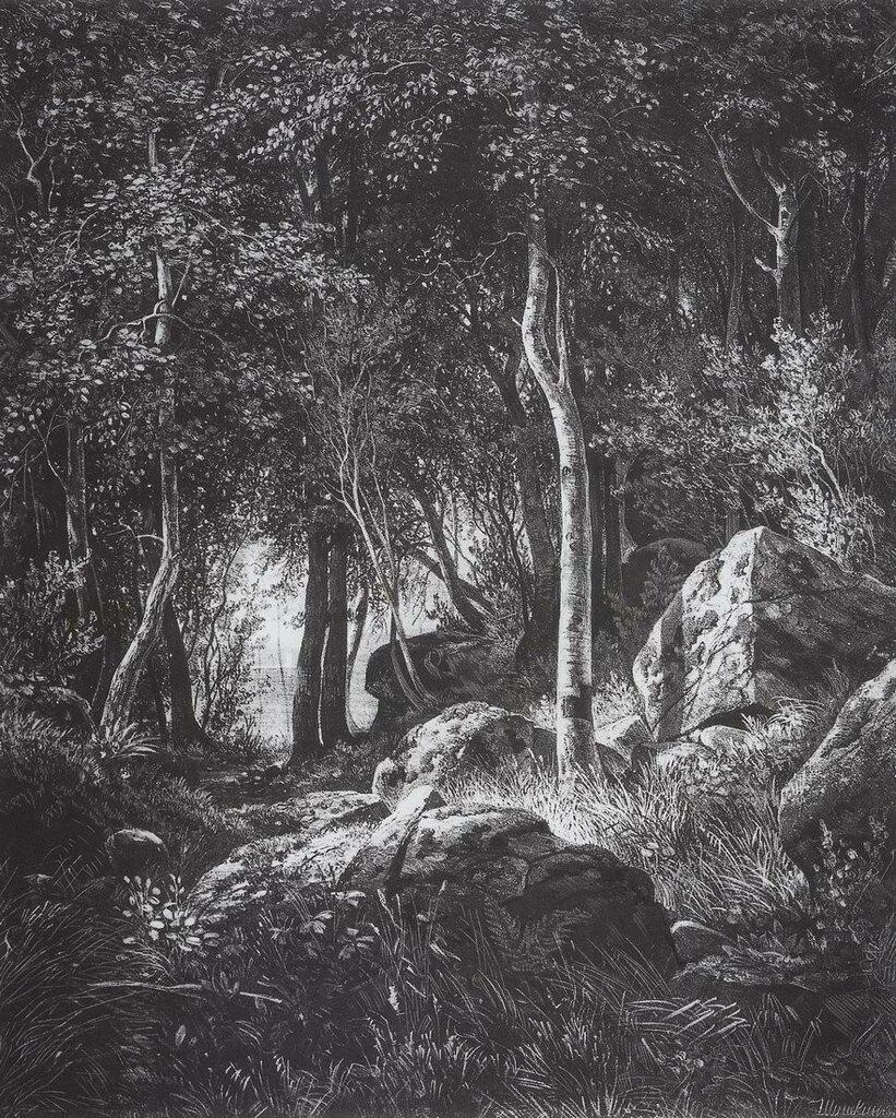 На краю березовой рощи. Остров Валаам. 1859-1860 44,4х37,5.jpg