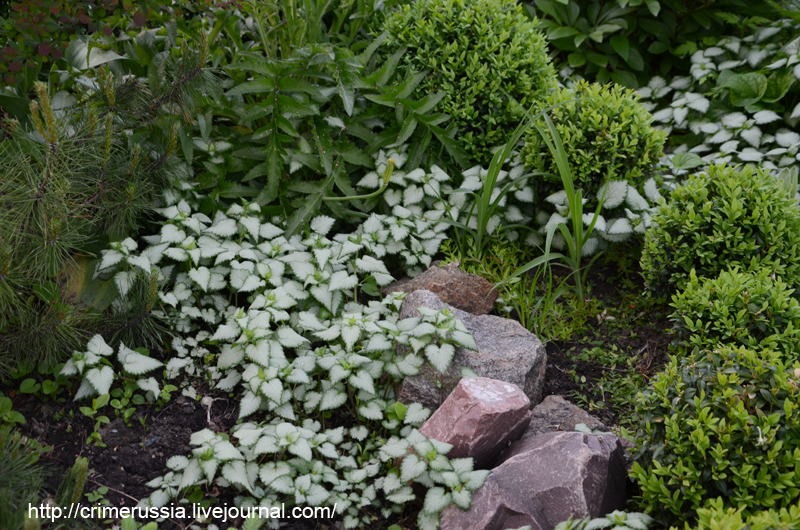 декор камни в саду