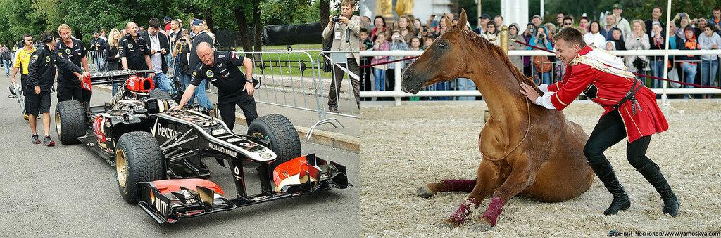 Лошади.21..jpg