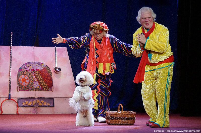 Осень. Театр кошек. ДИНАСТИЯ. 15.10.15.33..jpg