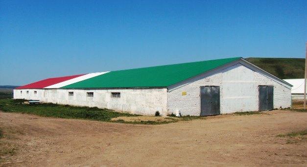 Конеферма в деревне Каран