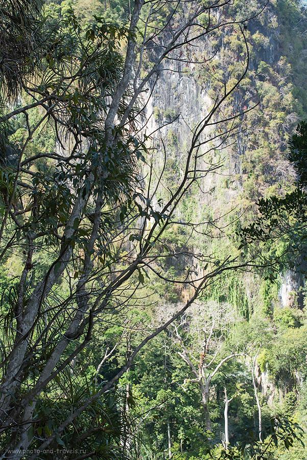 Фото 12. Фактически, в момент съемки этой фотографии я стою на такой же отвесной скале. Восхождение на гору с храмом Тигровой Пещеры на Краби. Отчет об отдыхе в Таиланде самостоятельно. (2500, 70, 10, 1/1250)