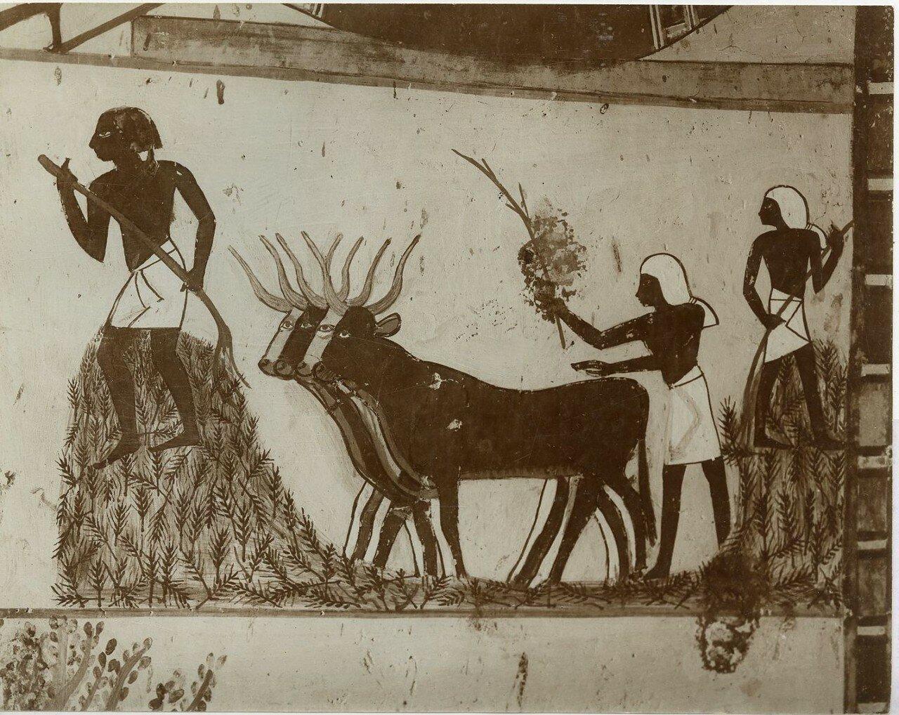 Изображения в гробнице Менны