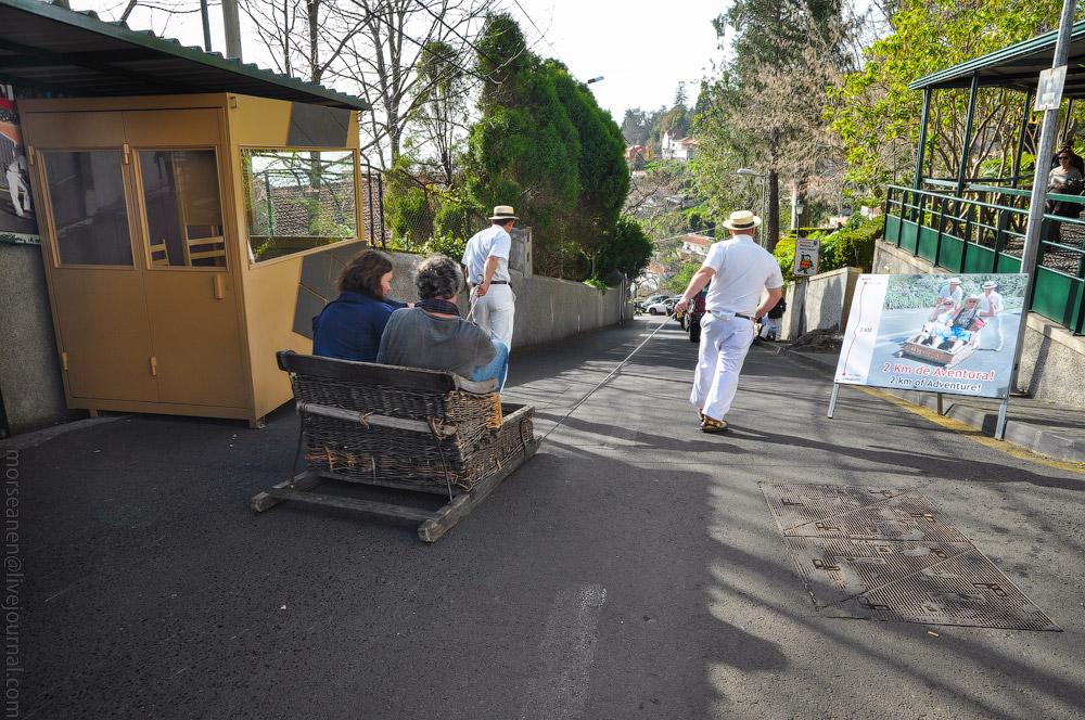 Madeira-Garten-(9).jpg