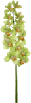 Lime Orangeade
