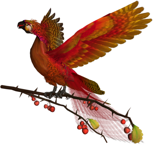 feli_l_fire bird2.png