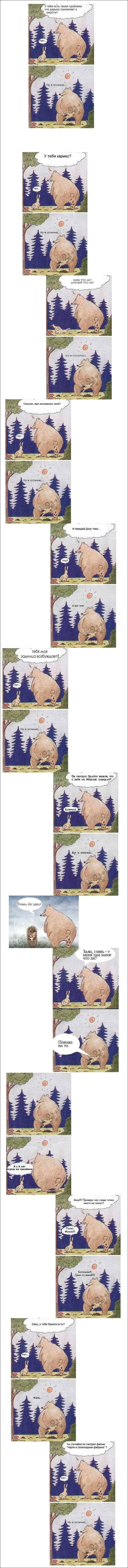 Заяц и медведь