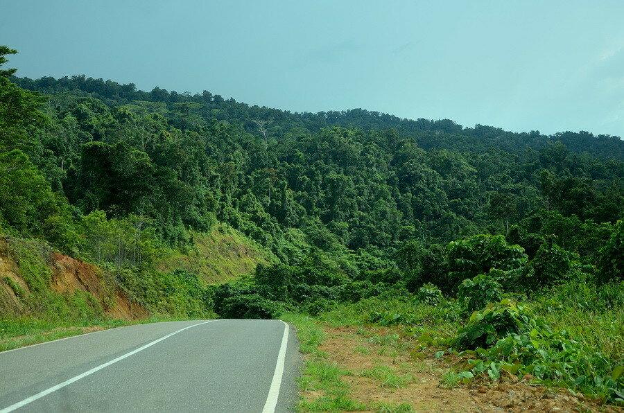 Лес Город Соронг на Западном Папуа в Индонезии Город Соронг на Западном Папуа в Индонезии 0 1b0fc7 fc14bed8 XXL