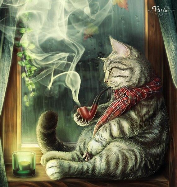 кошка-1.jpg