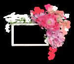 Palvinka_FlowerEssence_cluster (11).png