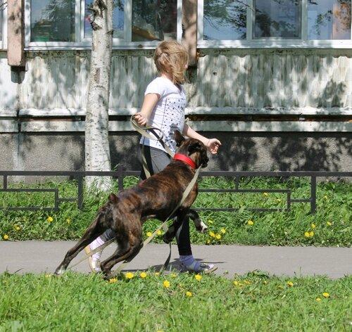 http://img-fotki.yandex.ru/get/9107/37699747.3f/0_a3d68_9ed72482_L.jpg