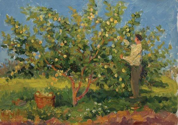 Леонтий Никифорович Мазанов (1902-1982). Сбор яблок, 1952.