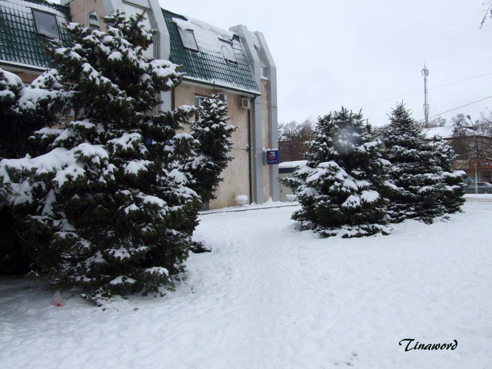 зима-6.jpg