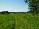 Старинная дорога вышла из леса близ Морозова