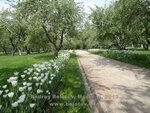 В Коломенском весной