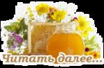 https://img-fotki.yandex.ru/get/9108/100773997.83c/0_fad36_c25465d5_S