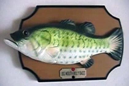 Поющая рыба спугнула американского грабителя