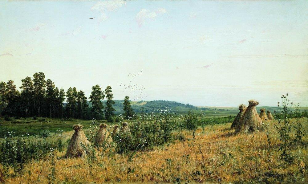 Сжатое поле.Полесский пейзаж 1884 71.5х117.5.jpg