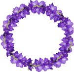Flowers Frame.png