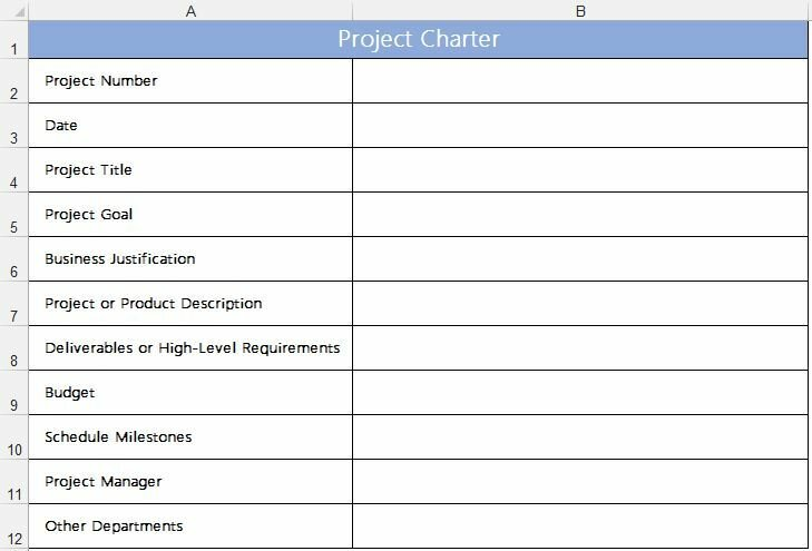 Рис. 1. Форма для хартии проекта