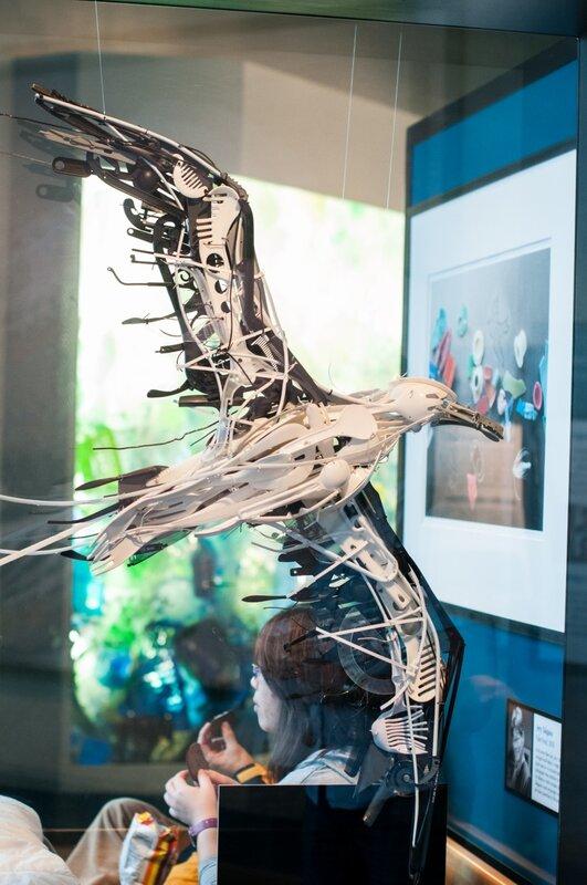monterey bay aquarium: seagull made of garbage