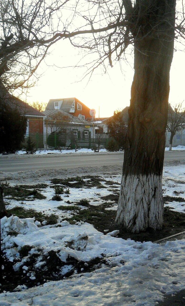 Зимние картинки, январь 2014