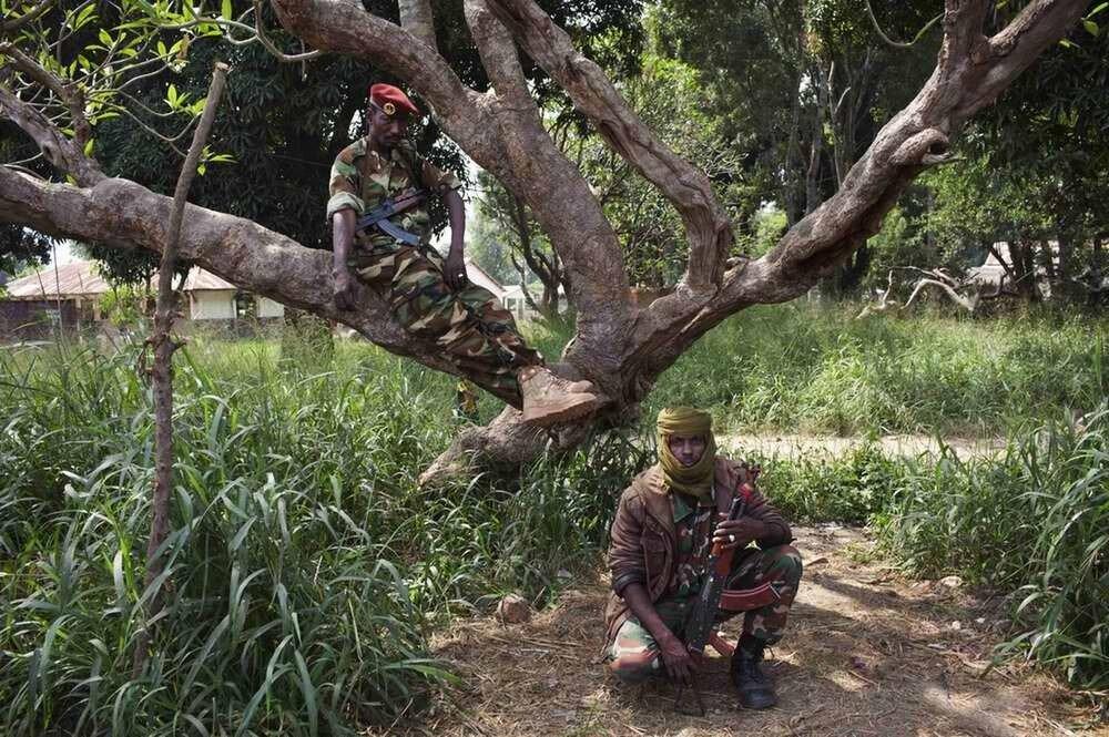Бойцы мусульманской Seleka в ходе ведения переговоров о прекращении военных действий и сдаче оружия с командованием многонациональных сил по поддержанию порядка в Центральной Африке
