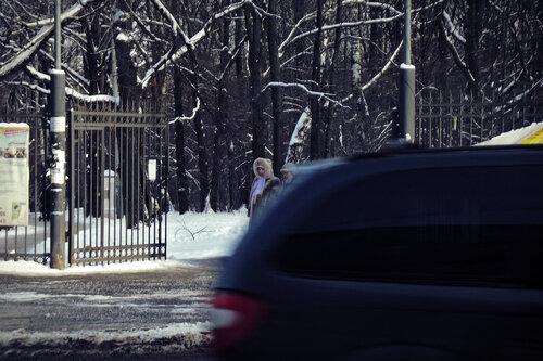 Машины, люди и деревья