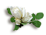 http://img-fotki.yandex.ru/get/9108/97761520.ce/0_7fbb1_e9b6a001_orig.png